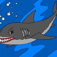 Morski pes